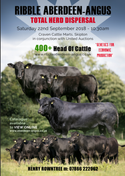 RIBBLE ANGUS DISPERSAL - SATURDAY 22ND SEPTEMBER 2018