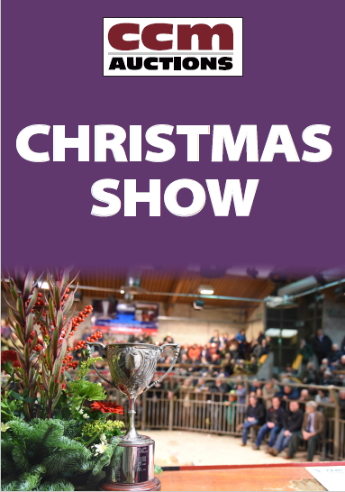 CHRISTMAS SHOW - SUNDAY 27TH NOVEMBER 2016