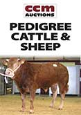 Northern Limousin Extravaganza Report May 14th 2013