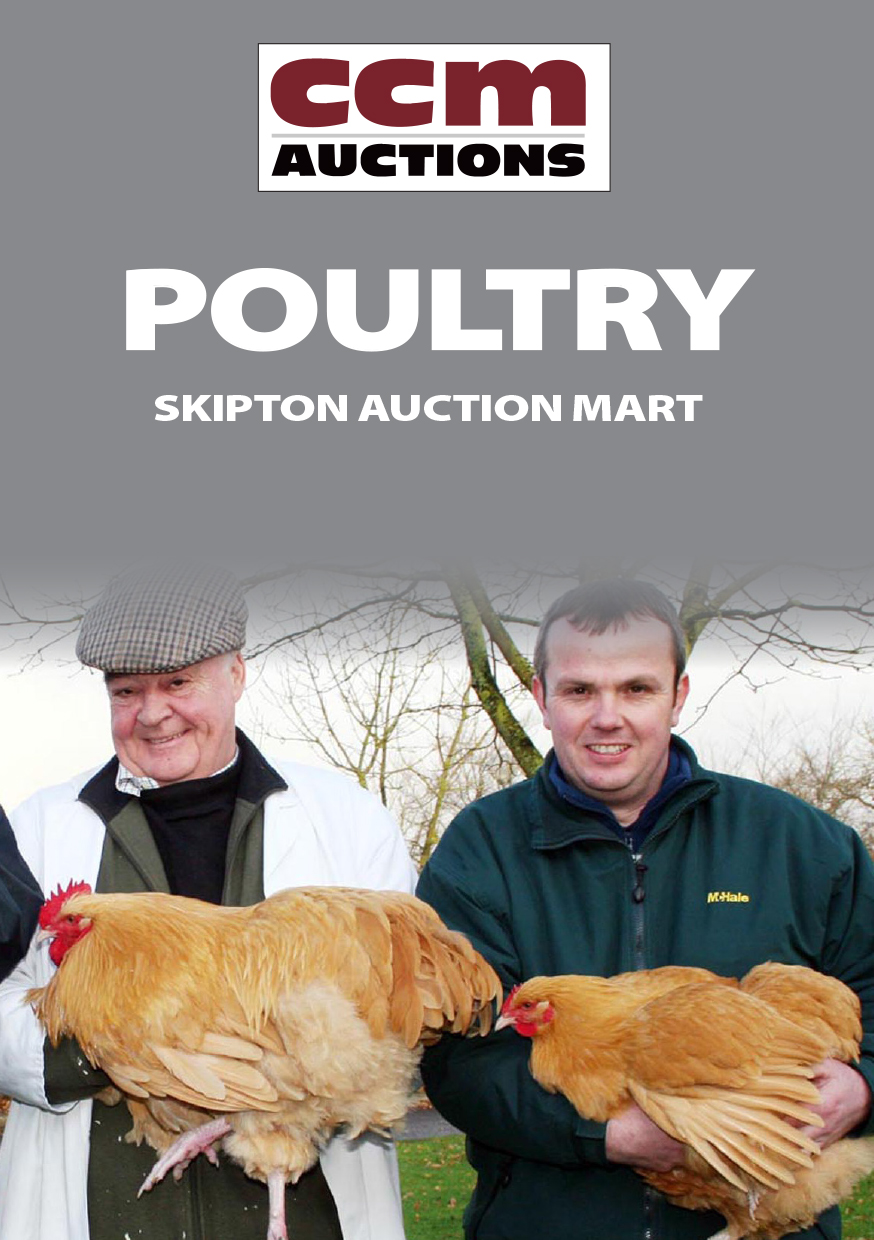 SPRING POULTRY - SATURDAY 10TH MARCH 2016