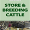 STORE & BREEDING CATTLE - WEDNESDAY 25TH NOVEMBER 2020